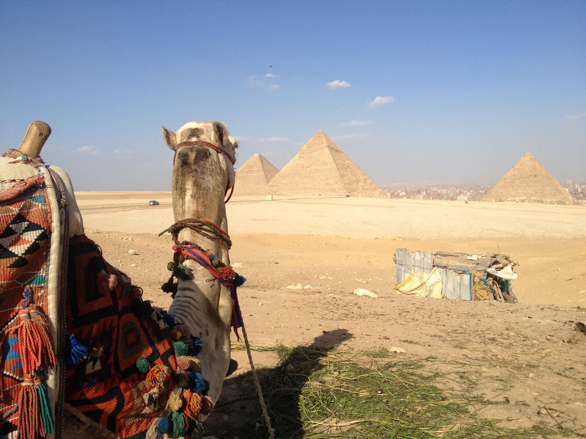 Travel To Egypt What To Bring